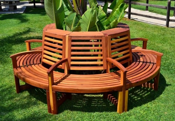 Luna-tree-bench-from-Forever-Redwood