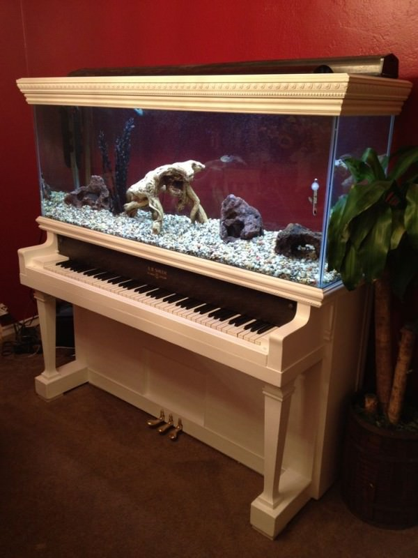 Aquarium-built-into-a-white-piano