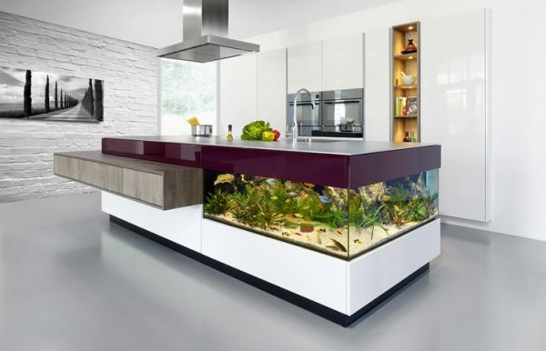 Aquarium-built-into-kitchen-counter-