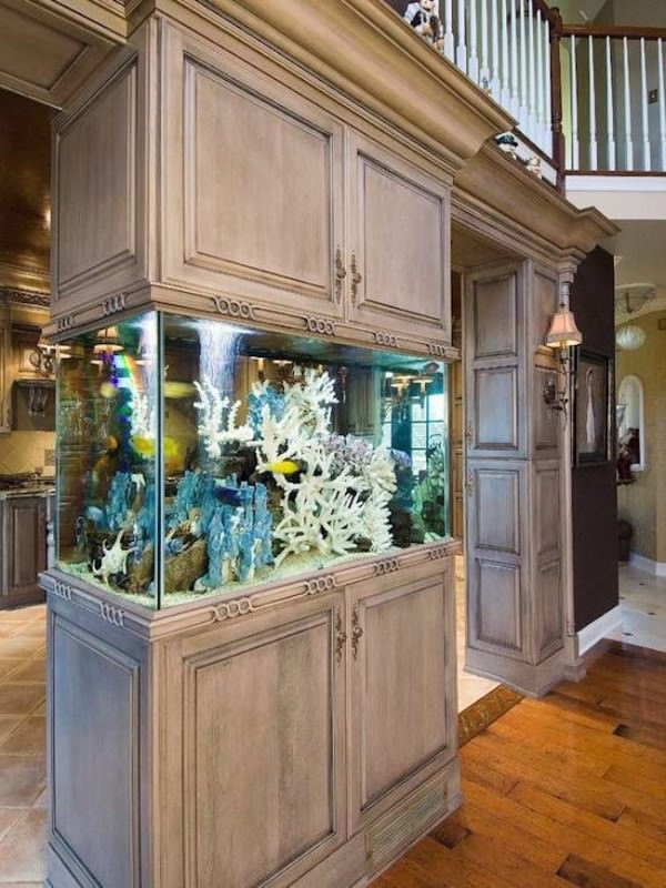 Aquarium-built-into-kitchen-cupboards