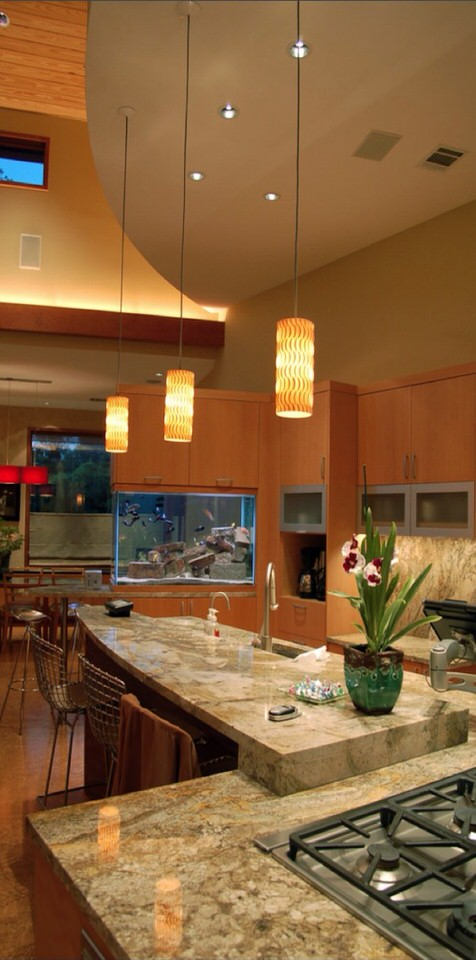 Aquarium-built-into-kitchen-cupboards-and-countertop