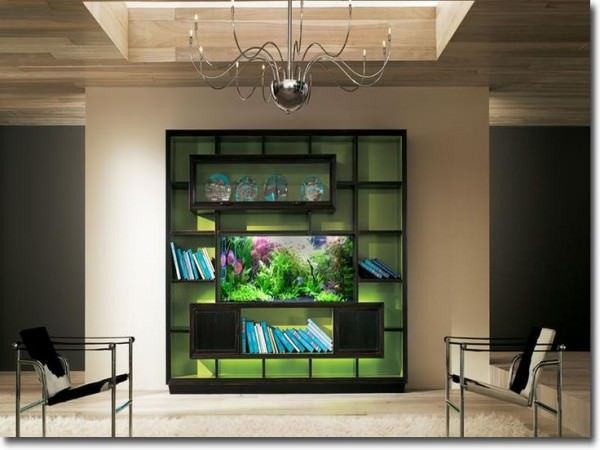 Aquarium-built-into-shelving-unit