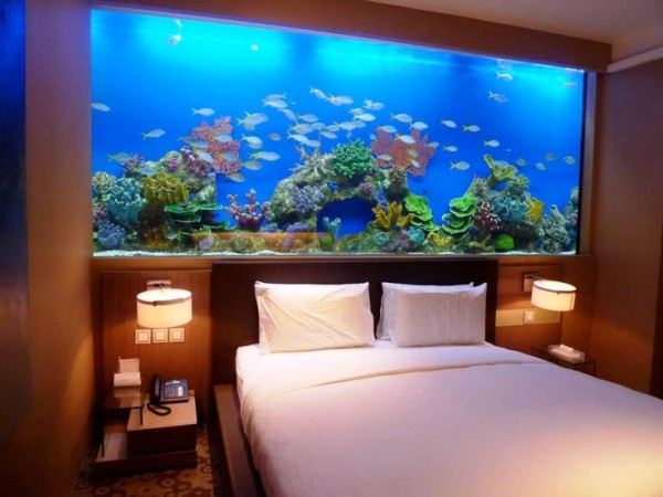 Huge-aquarium-takes-the-place-of-a-headboard