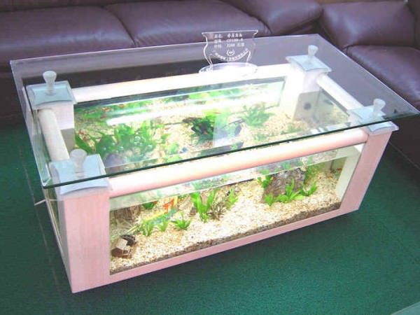 Rectangular-coffee-table-aquarium