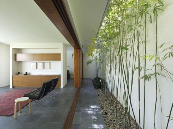 Long-and-linear-courtyard-with-bamboo