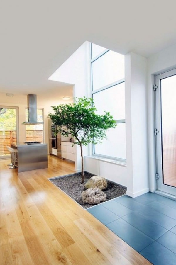Small-natural-area-for-a-tree-inside-a-home