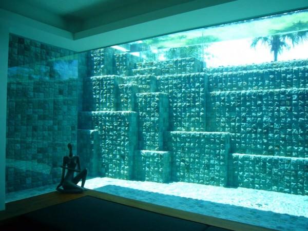 piscine transparente 5