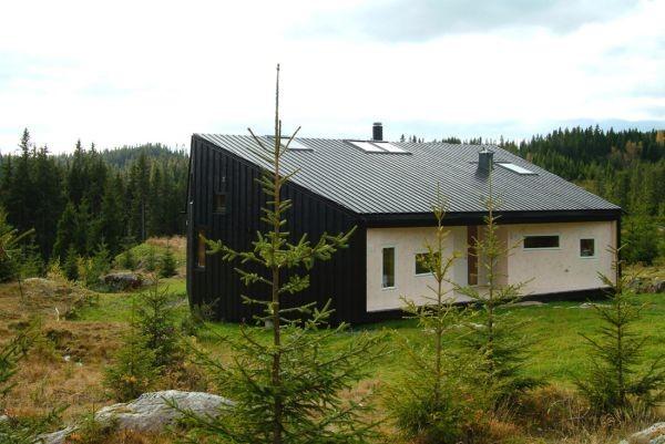 cabane la munte 17