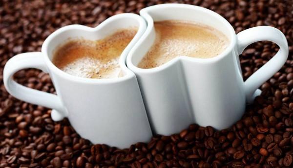 cani de cafea 21