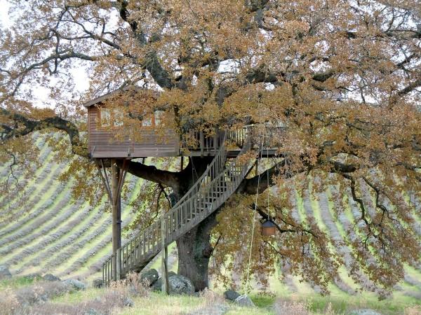 casa in copac 4