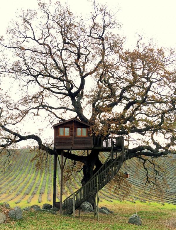 casa in copac 5
