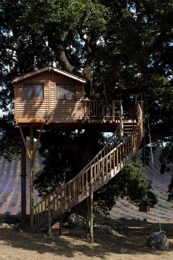 casa in copac 7