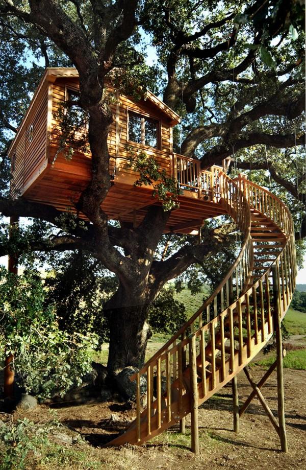 casa in copac 8
