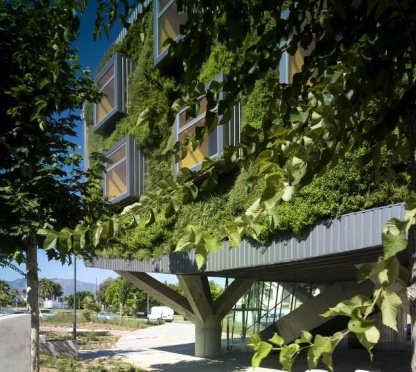 casa ecologica imbracata in verdeata 6