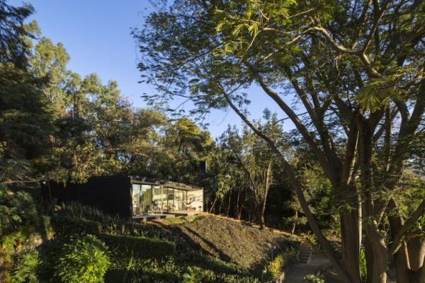 casa de vacanta in padure 1