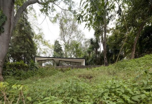 casa de vacanta in padure 3