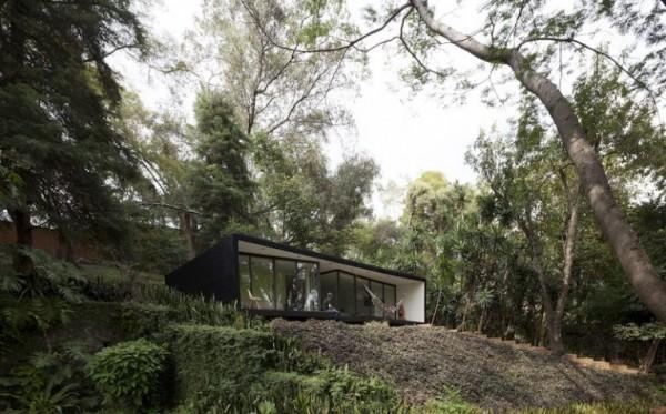 casa de vacanta in padure 6