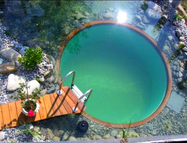 Circular-Natural-Pool