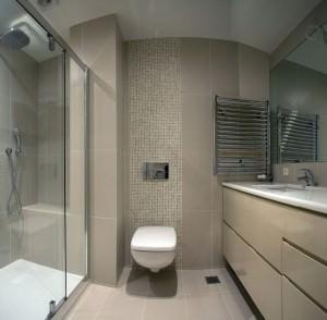 apartament-decorat-minimalist (12)