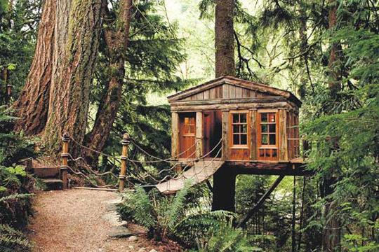 casa in copac 16