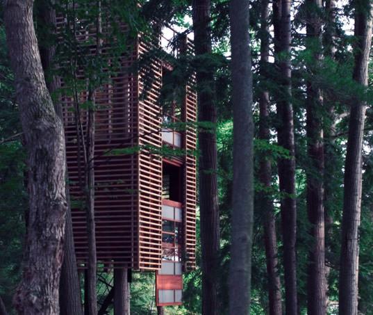 casa in copac 2