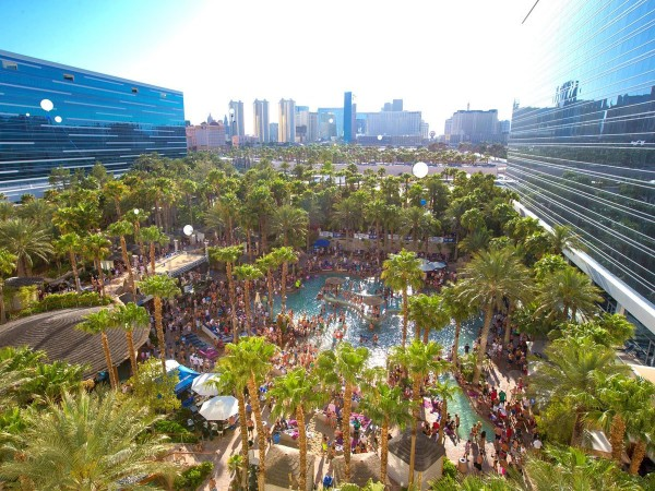for-wild-daytime-parties-head-to-the-pool-at-hard-rock-hotel-in-las-vegas
