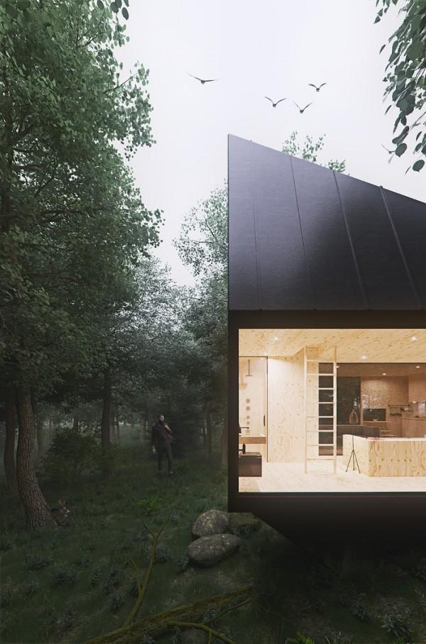 forest-par-tomek-michalski-cabin1