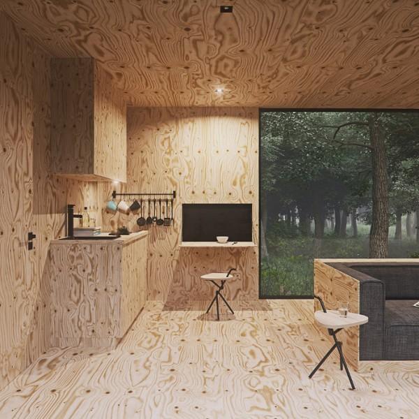 forest-par-tomek-michalski-cabin6