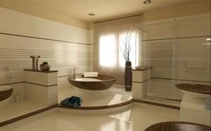 idei-decorare-baie-luxoasa (8)