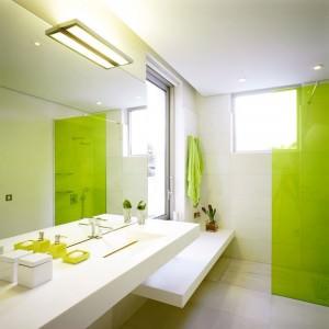 idei-redecorare-baie-verde (1)