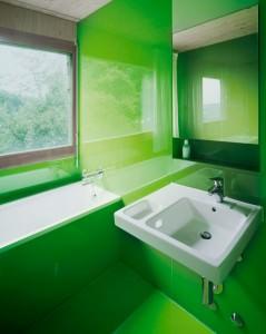 idei-redecorare-baie-verde (5)