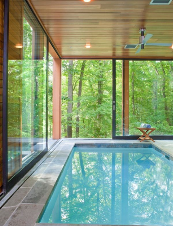 indoor-pool-with-nature-views