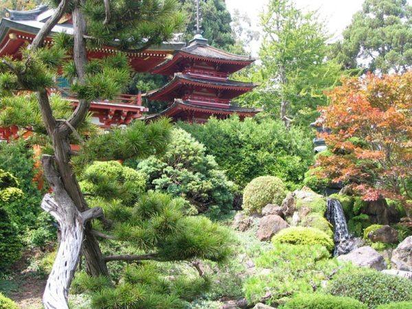japanese-tea-garden-in-san-francisco1