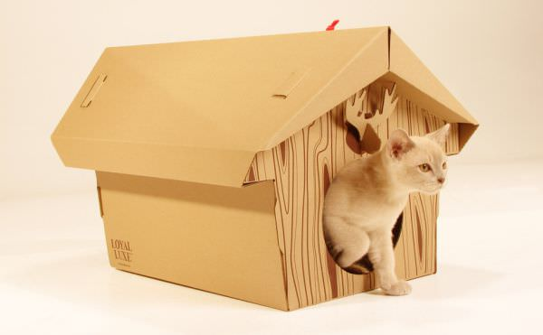 mobilier animale 12