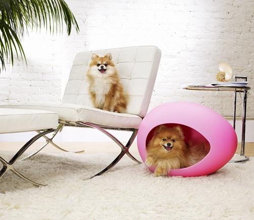mobilier animale de companie (3)