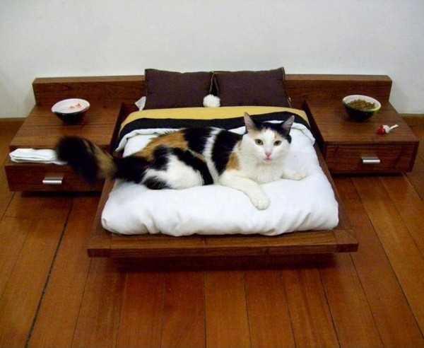piese de mobilier animale de companie