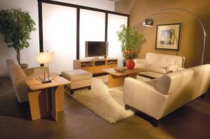 redecorare-living-dimensiuni-mici (10)